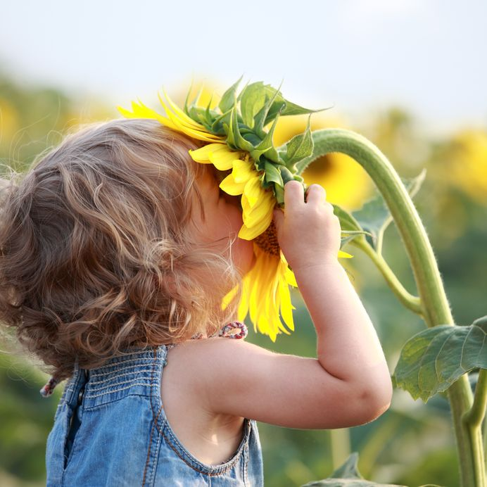 Los Beneficios Que Te Trae La Agricultura Ecológica