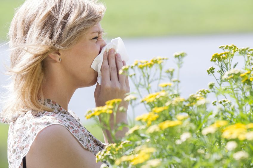 Tus Alergias Y La Quiropráctica