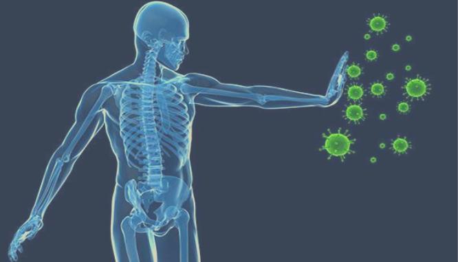 Sistema Inmune Y Quiropráctica
