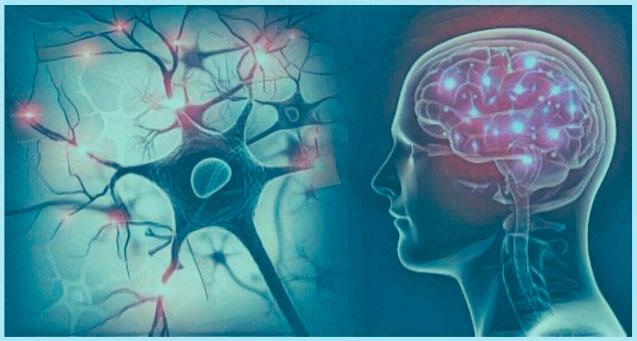 Quiropráctica E Higiene Mental - Marcelo Quiropráctico